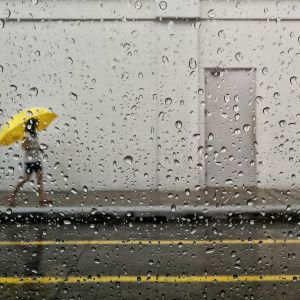 Yellow in Rain